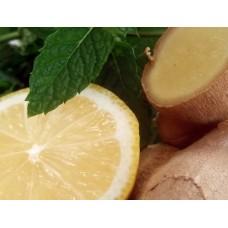Minze Ingwer Zitrone Sirup