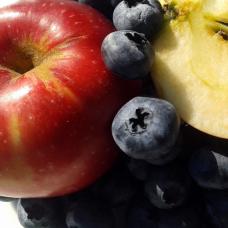 Waldheidelbeer Apfel Fruchtaufstrich